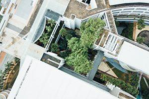 modern vrt