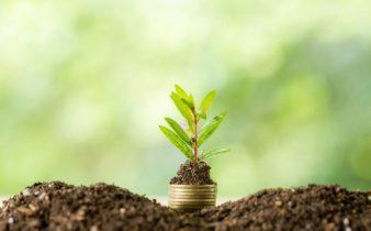 Azomite za izboljšanje tal